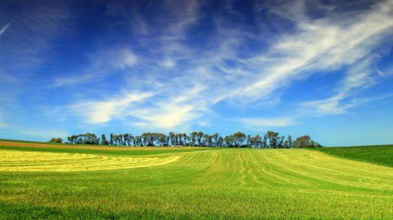 La Diputación de Salamanca fomenta el corporativismo agrario