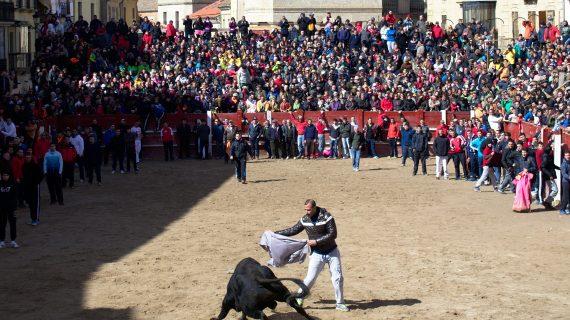El Carnaval del Toro, ya tiene ganaderías