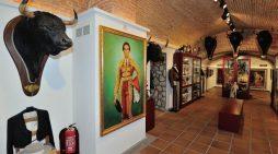 El Museo Taurino de Salamanca celebrará su 25 aniversario con tres días de puertas abiertas