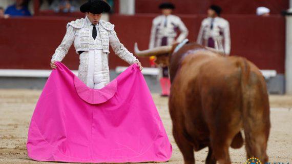 Juan del Álamo anunciado tres tardes en Las Ventas