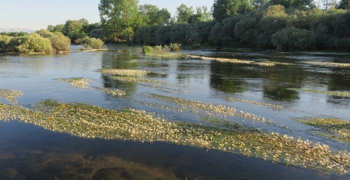 El Ayuntamiento de Salamanca solicitará a la CHD que repare la Pesquera del Tormes