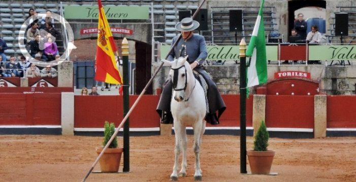 Los caballos andaluces 'bailaron' en Salamanca