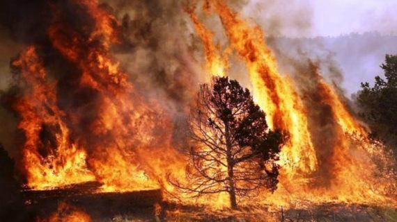 Iniciada la campaña contra incendios de este verano