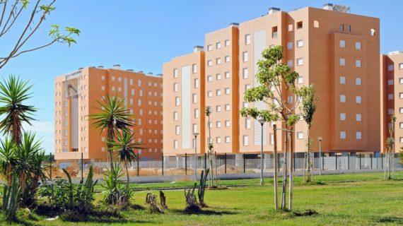 El Ayuntamiento promoverá la construcción de 35 viviendas de alquiler protegido, trasteros y garajes en el Rollo
