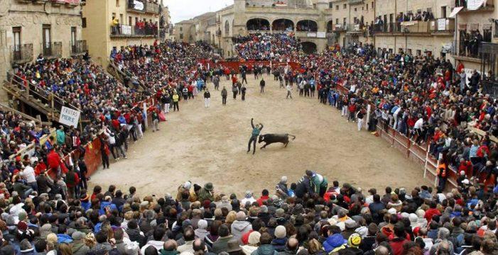 Los mirobrigenses podrán seleccionar el próximo cartel anunciador del Carnaval del Toro