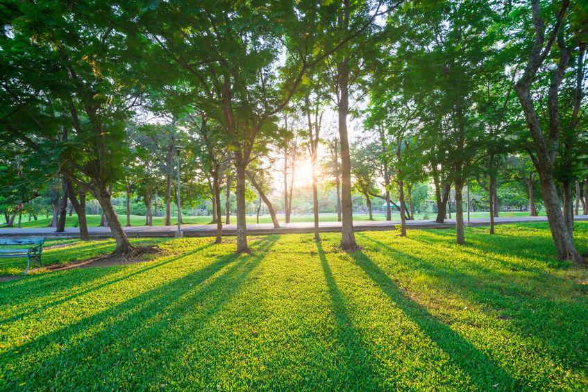 Angocasa - Terreno em Zona Verde  |Tari Zona Verde