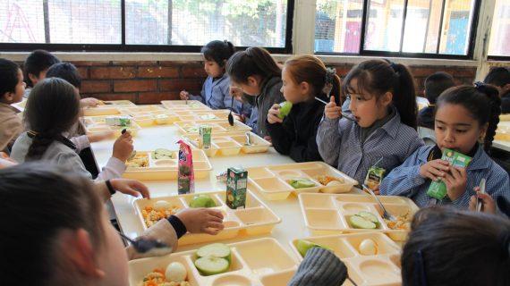 La Consejería de Educación asegura que no se utiliza el aceite de palma en menús escolares