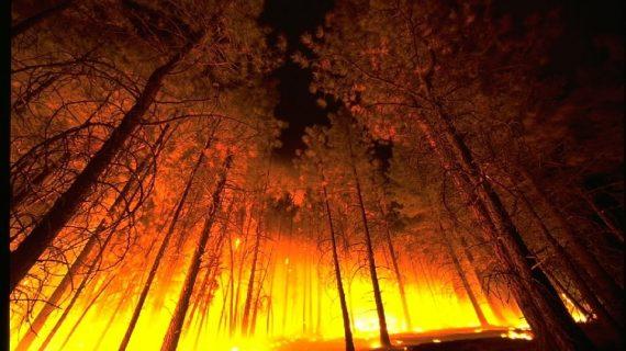 Continúa la época de peligro medio de incendios forestales
