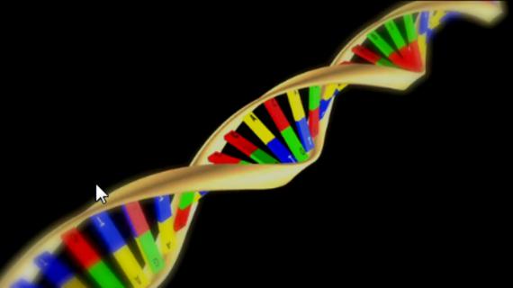 El Instituto de Biología Funcional y Genómica de la USAL, núcleo generador de excelencia científica en la región