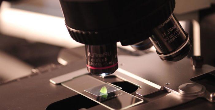 La UPSA programa una treintena de actividades con motivo de la Semana de la Ciencia en Castilla y León