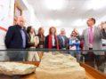 La Universidad de Salamanca recupera una de las colecciones de vertebrados del Eoceno más importantes de toda Europa
