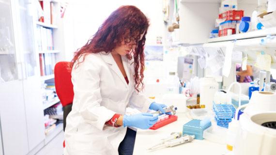 Una investigadora de la USAL demuestra que la inhibición de una proteína frena el desarrollo de la fibrosis hepática