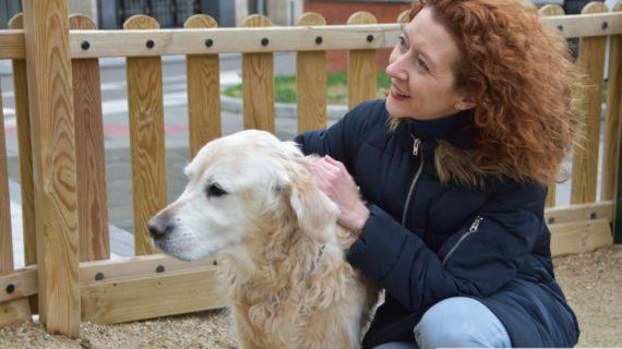 'No somos juguetes' es la campaña para concienciar sobre la compra responsable de cachorros